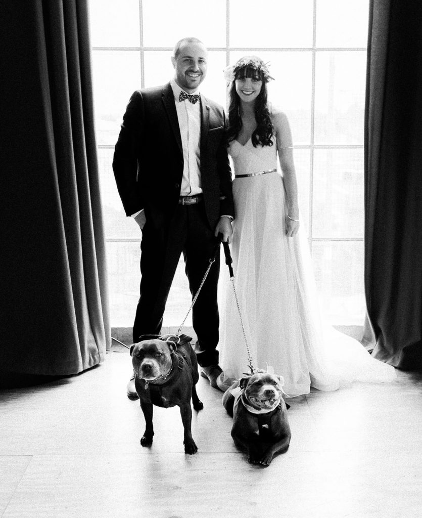 Dogs at Warehouse Wedding