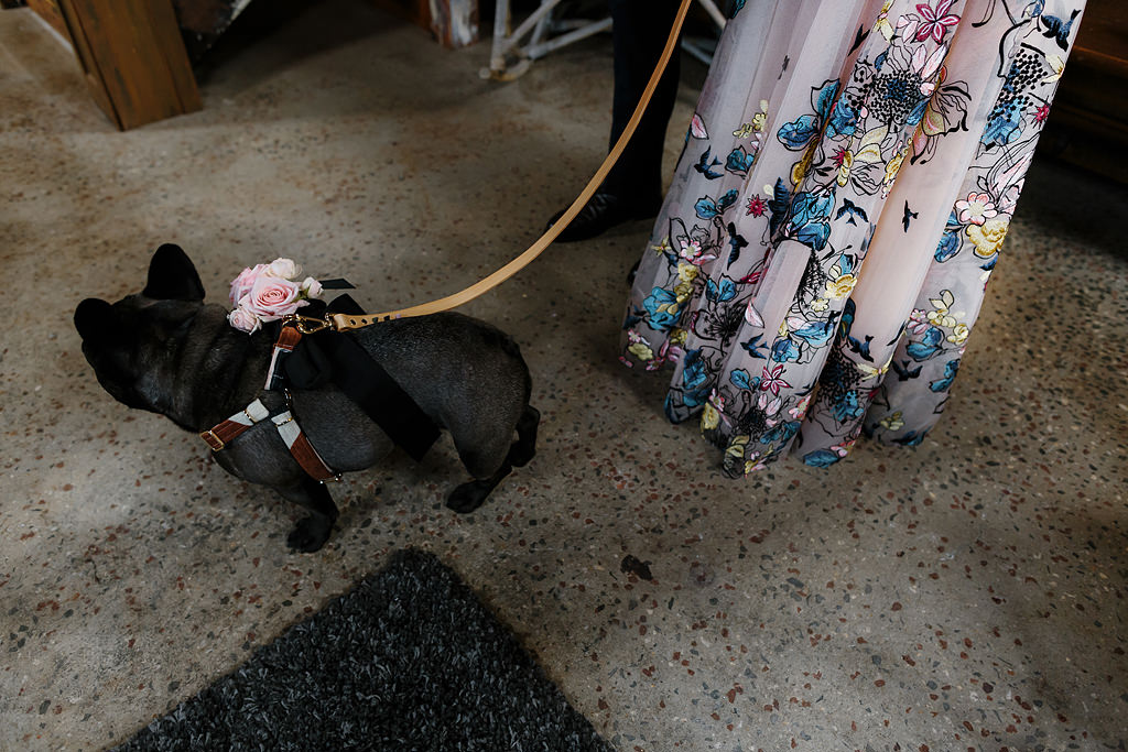 Bride with her dog at wedding