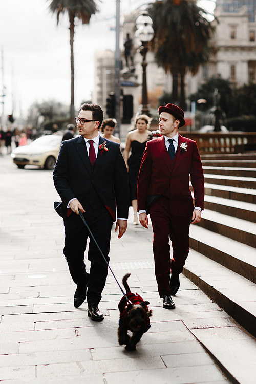 gay wedding photographer dog melbourne